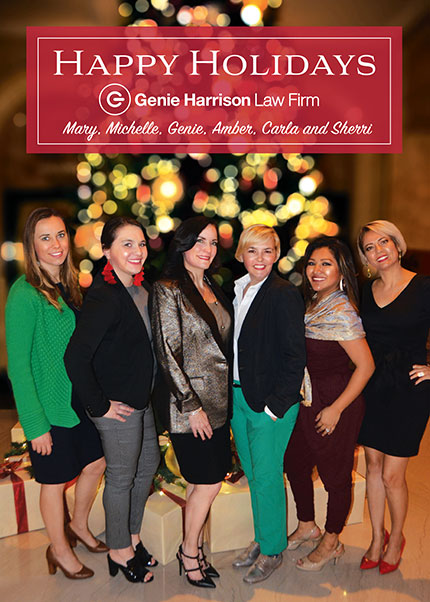 Women's rights lawyers